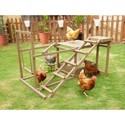 Innovation Pet Chicken Activity Center for 6 Chickens