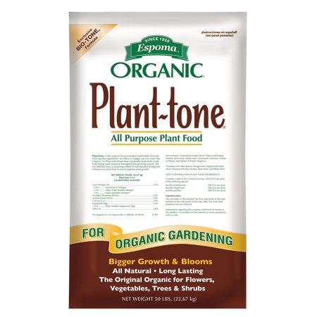 Patio Garden Organic Plants Dry Plants Organic Gardening