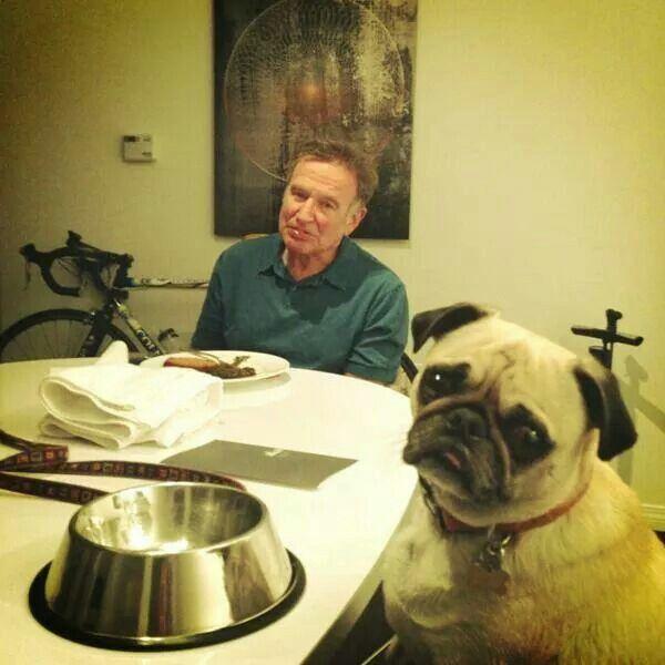 Robin Williams With Dog Leonard Rip 8 11 14 Robin Williams Pugs