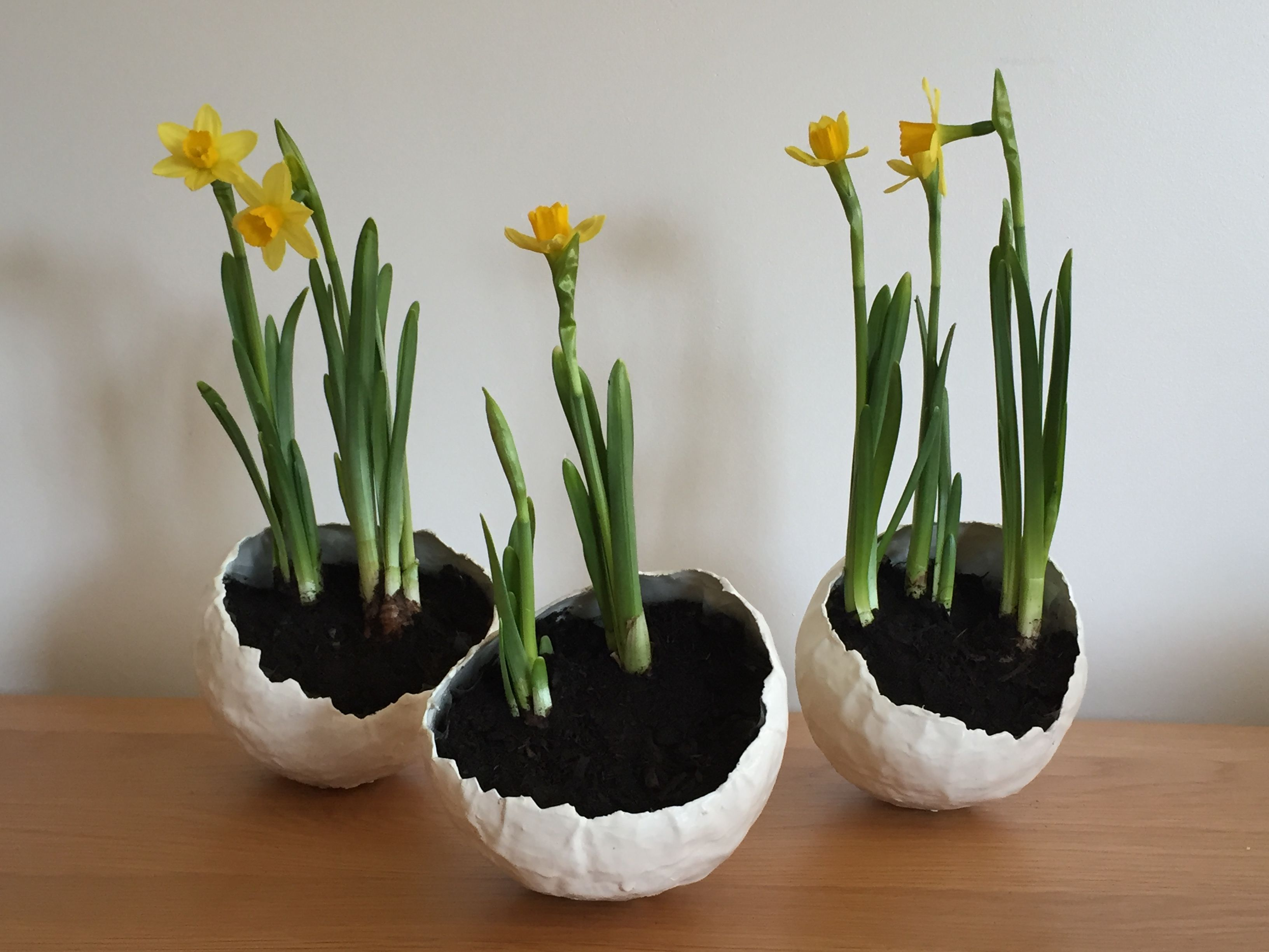 Easter Flower Pots Made From Paper Mache On A Balloon Painted And