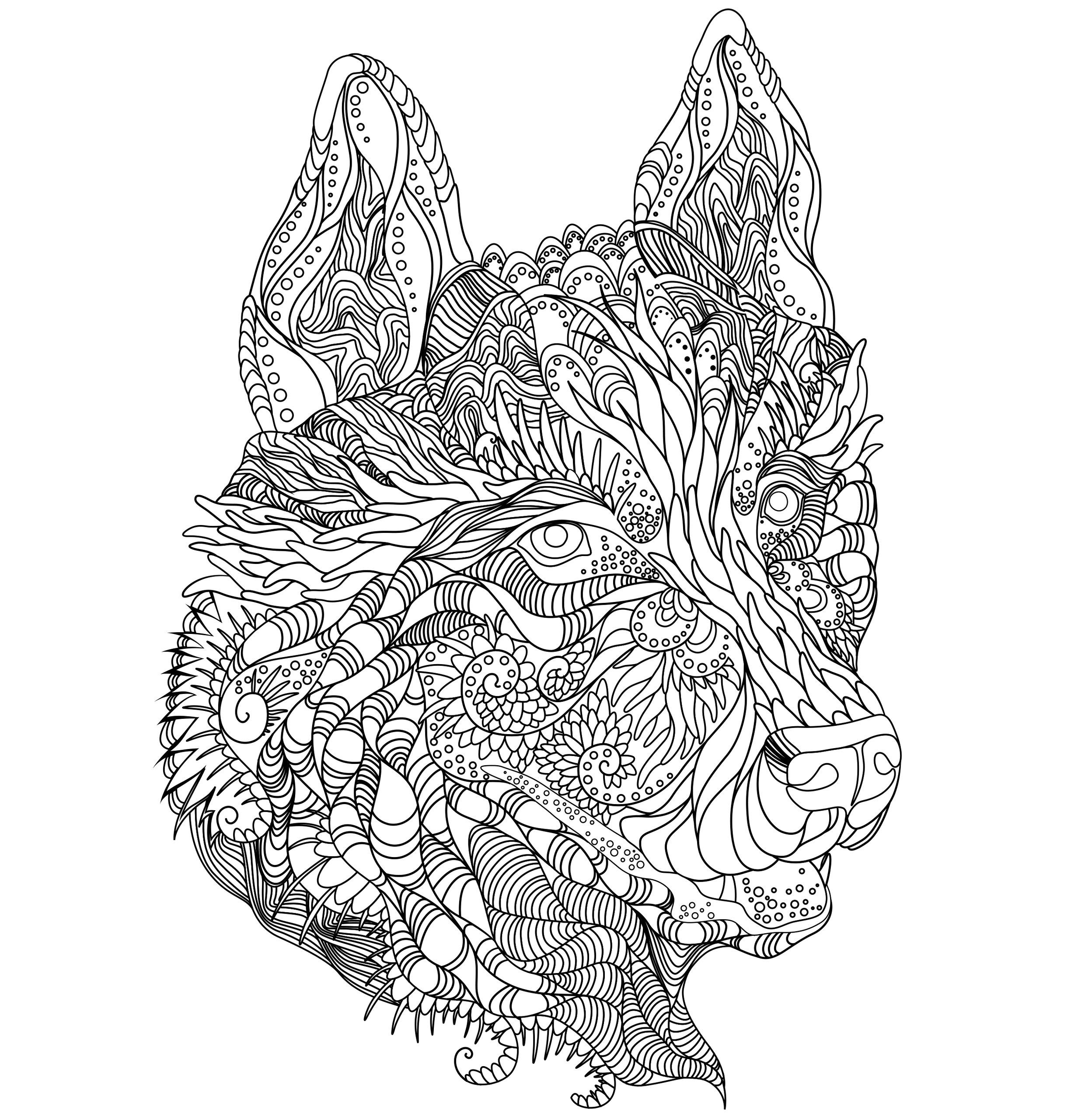 Wild At Heart Adult Coloring Book | cute coloring book | Pinterest ...