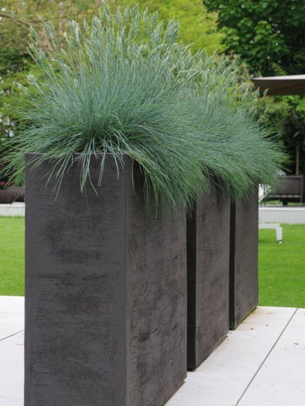 Photo of Ideen für Balkon Gestaltung: Ziergräser als dekoratives Element