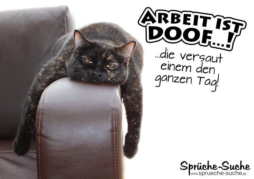 Arbeit Ist Doof Spruch Mit Fauler Katze Faule Katze Katzen Und
