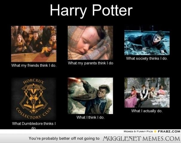 What People Think Harry Potter Does