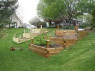 garden beds built into hill - Google Search