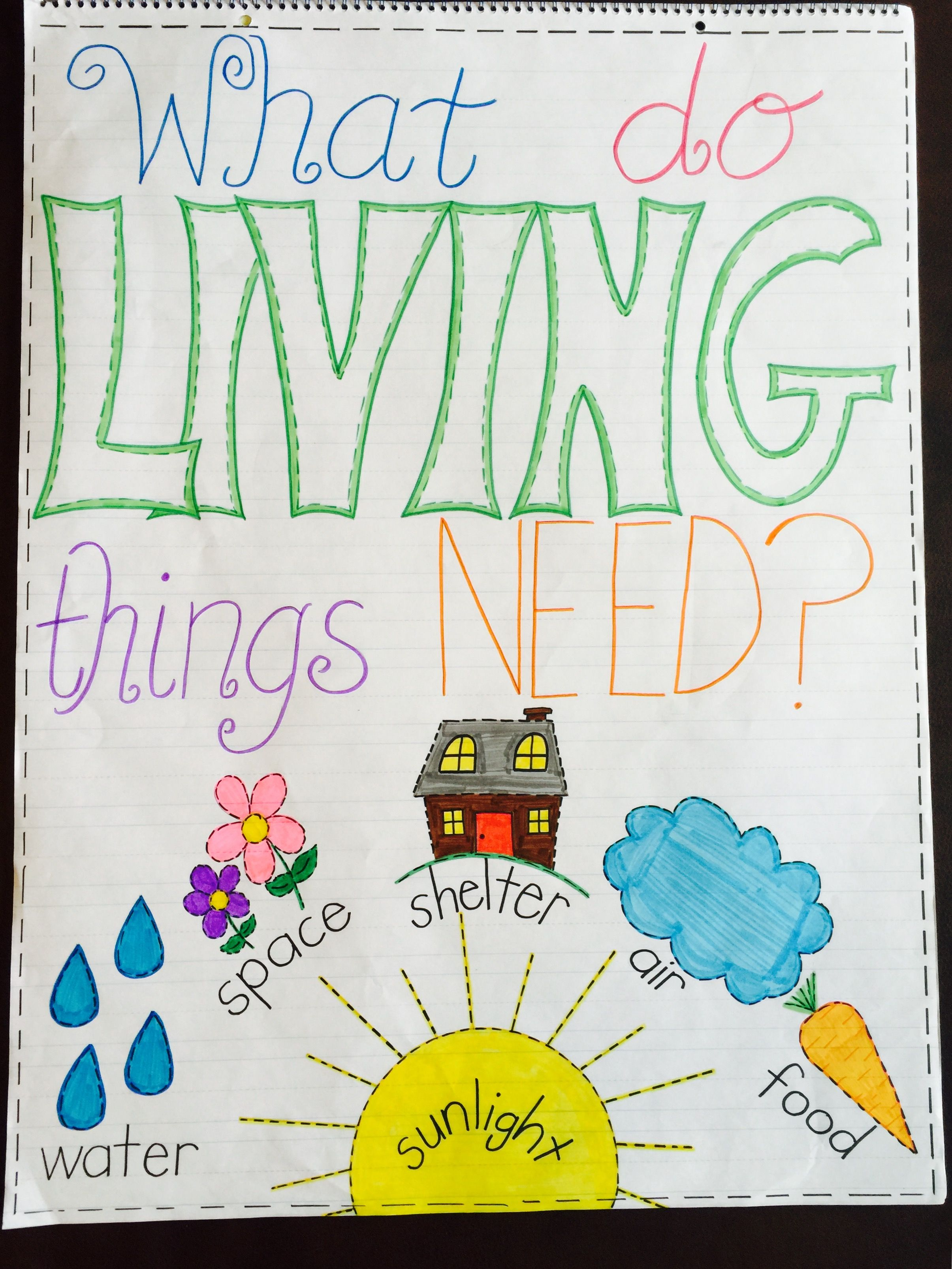 What Do Living Things Need Anchor Chart Anchor Charts Kindergarten Anchor Charts Anchor Charts First Grade [ 3213 x 2410 Pixel ]
