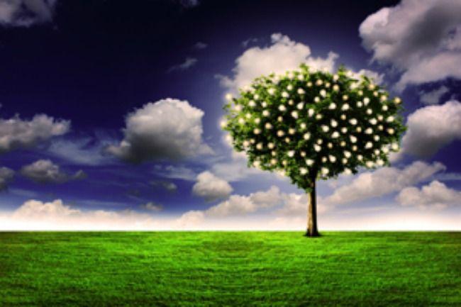 Where is the garden of eden today mormon doctrine faith - Where is the garden of eden today ...