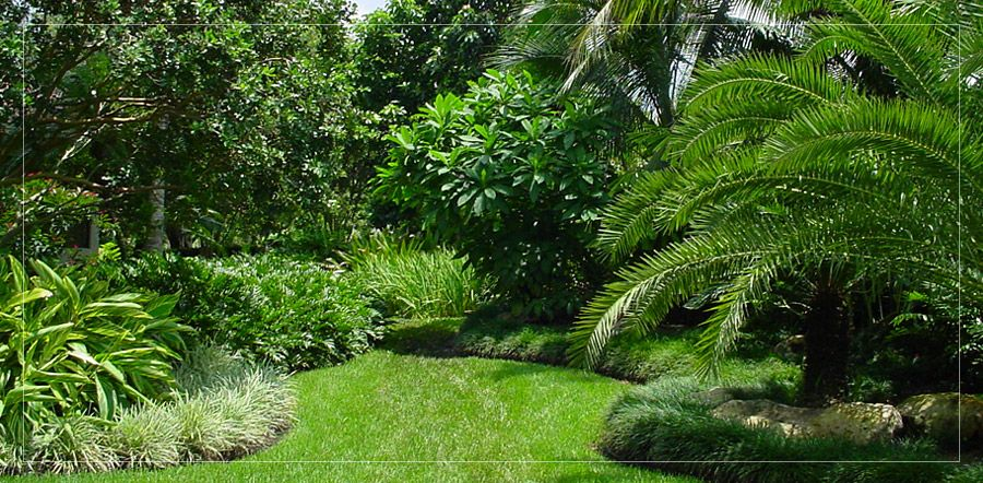 visions landscape architecture south florida landscape design