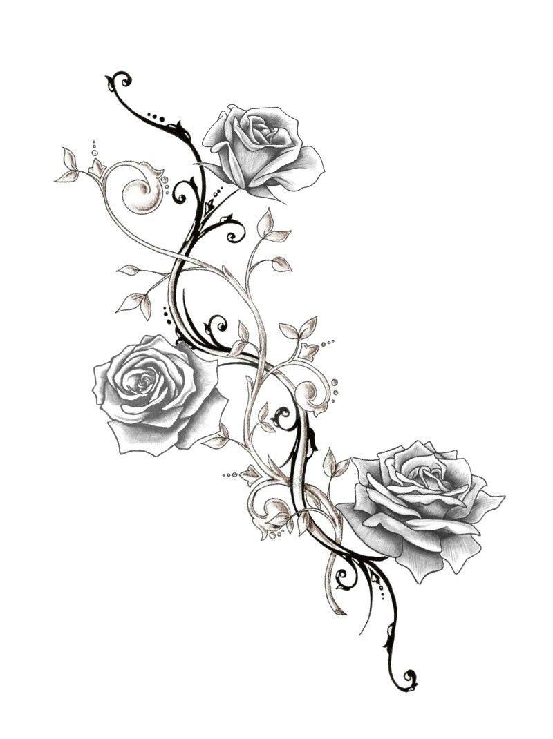 Pretty Rose Vine Tattoo Sleeve In 2020 Rose Vine Tattoos