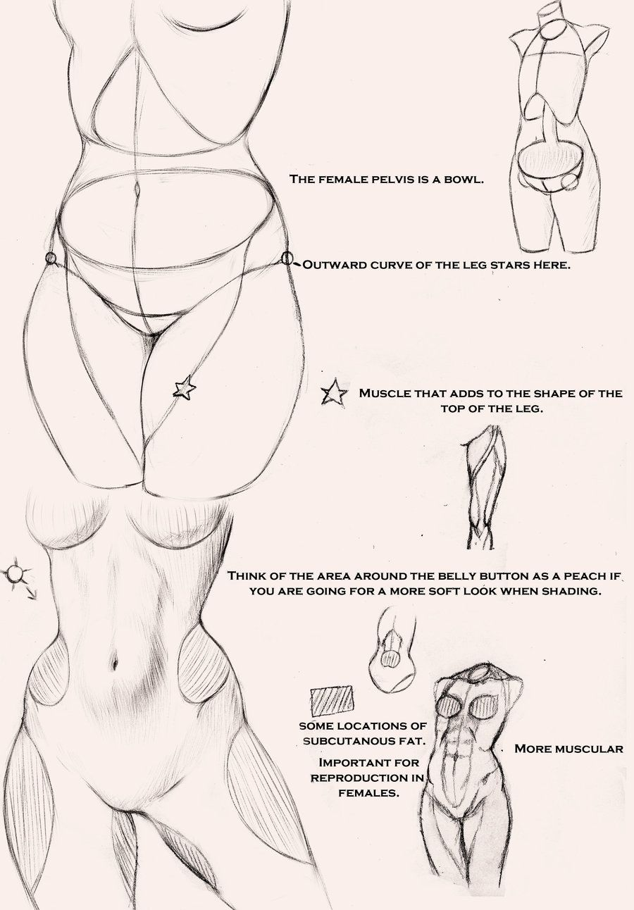 Female Anatomy Patterns Drawing – Body On All Tutorials – Deviantart ...