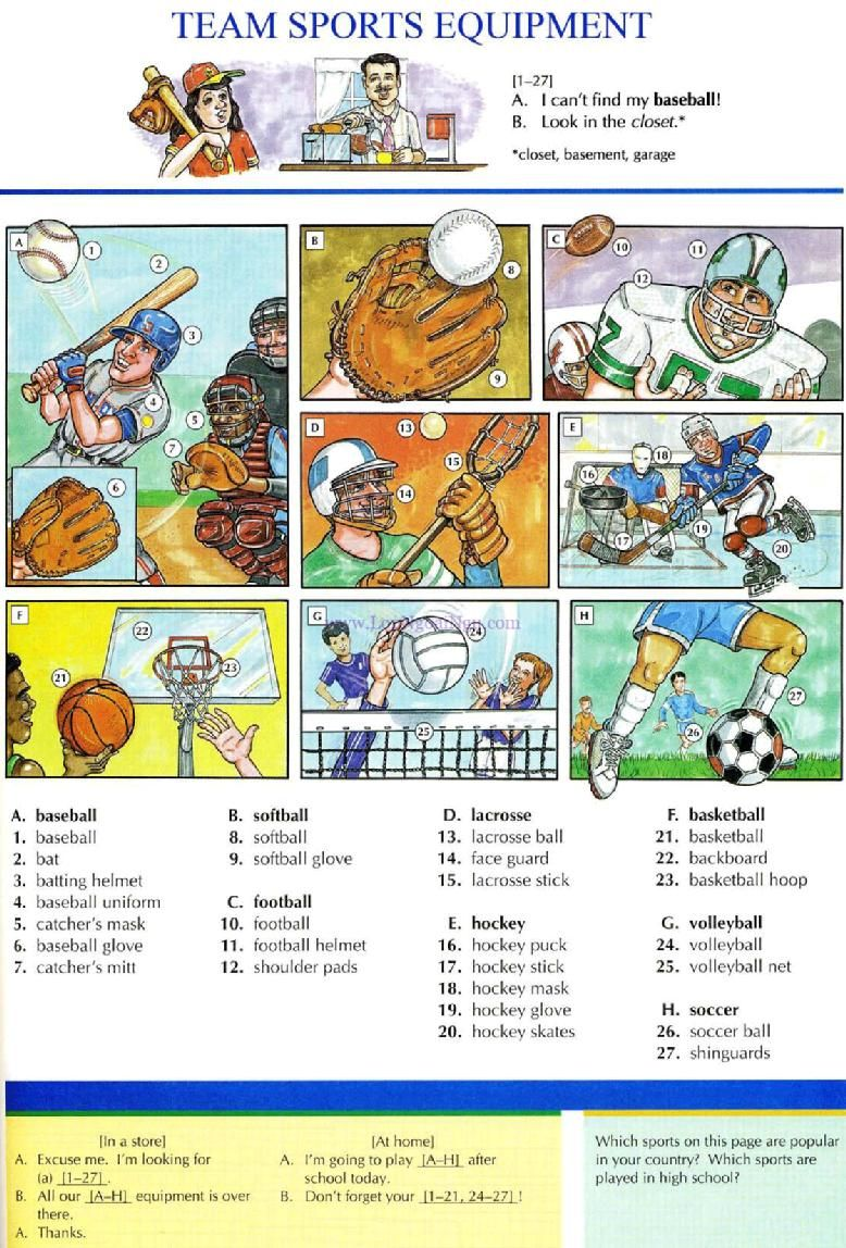 101 TEAM SPORTS EQUIPMENT Picture Dictionary English Study