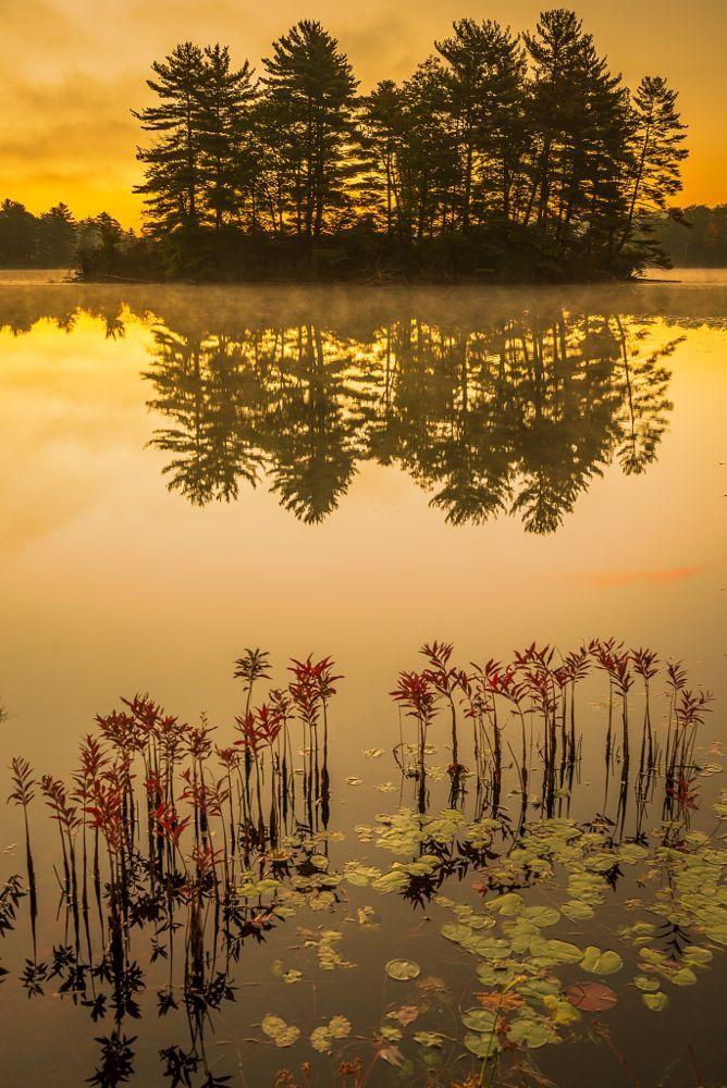 Symmetry Sunrise by Jay Cohen on 500px....  NewYork HarrimanStatePark #HudsonValley #HudsonRiverValley  #TioratiLake
