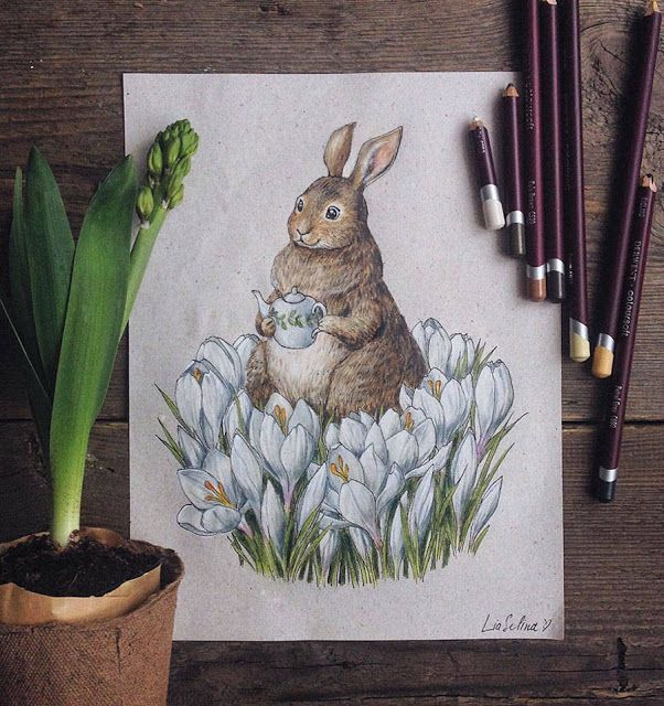 As Encantadoras Ilustrações de Lia Selina