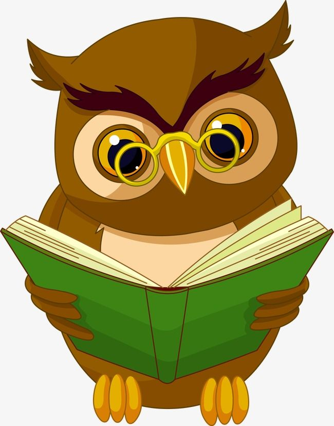 Owl Reading Reading Clipart Owl Clipart Nocturnal Animals Png