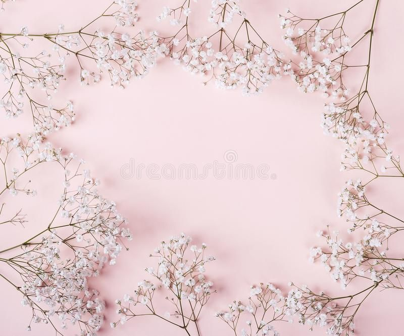 Light Pastel Pink Background With White Flowers Frame Spon Pink Pastel Light Background Frame Ad Pink Background White Flowers Pastel Pink