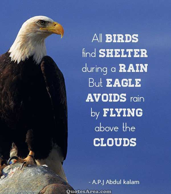 All birds find shelter during a rain but eagle avoids rain by flying above the clouds