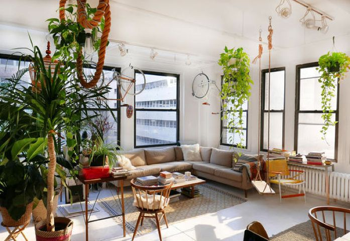 Sun drenched loft filled with plants