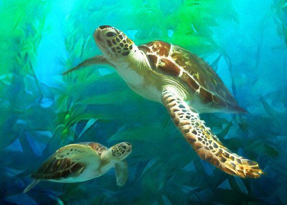 Sea Turtle Art Print Turtle Art Sea Turtle Painting Art Print