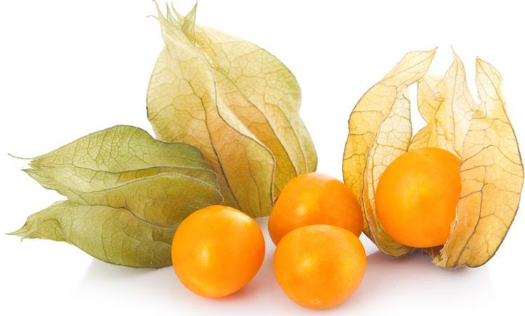 Resultado de imagen para Esta pequeña fruta es un tesoro: cura la próstata, combate el estreñimiento y previene el cáncer de estómago, colon e intestino. #Comparte alguien lo puede necesitar