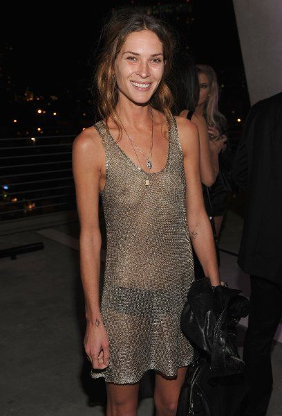 Erin Wasson, an American model, actress, occasional ...