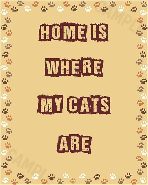 Cat lovers art home is where my cats are cat wall by RetroZones
