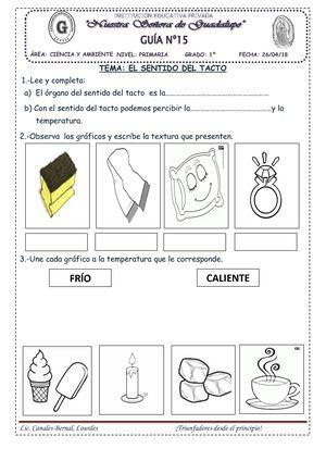 Calaméo Lourdes Maria Canales Bernal Sentido Del Tacto Actividades De Comprensión De Lectura Actividades De Aprendizaje Para Niños
