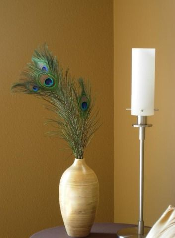 Put Peacock Feathers In A Vase To Brighten Up A Room Bring A