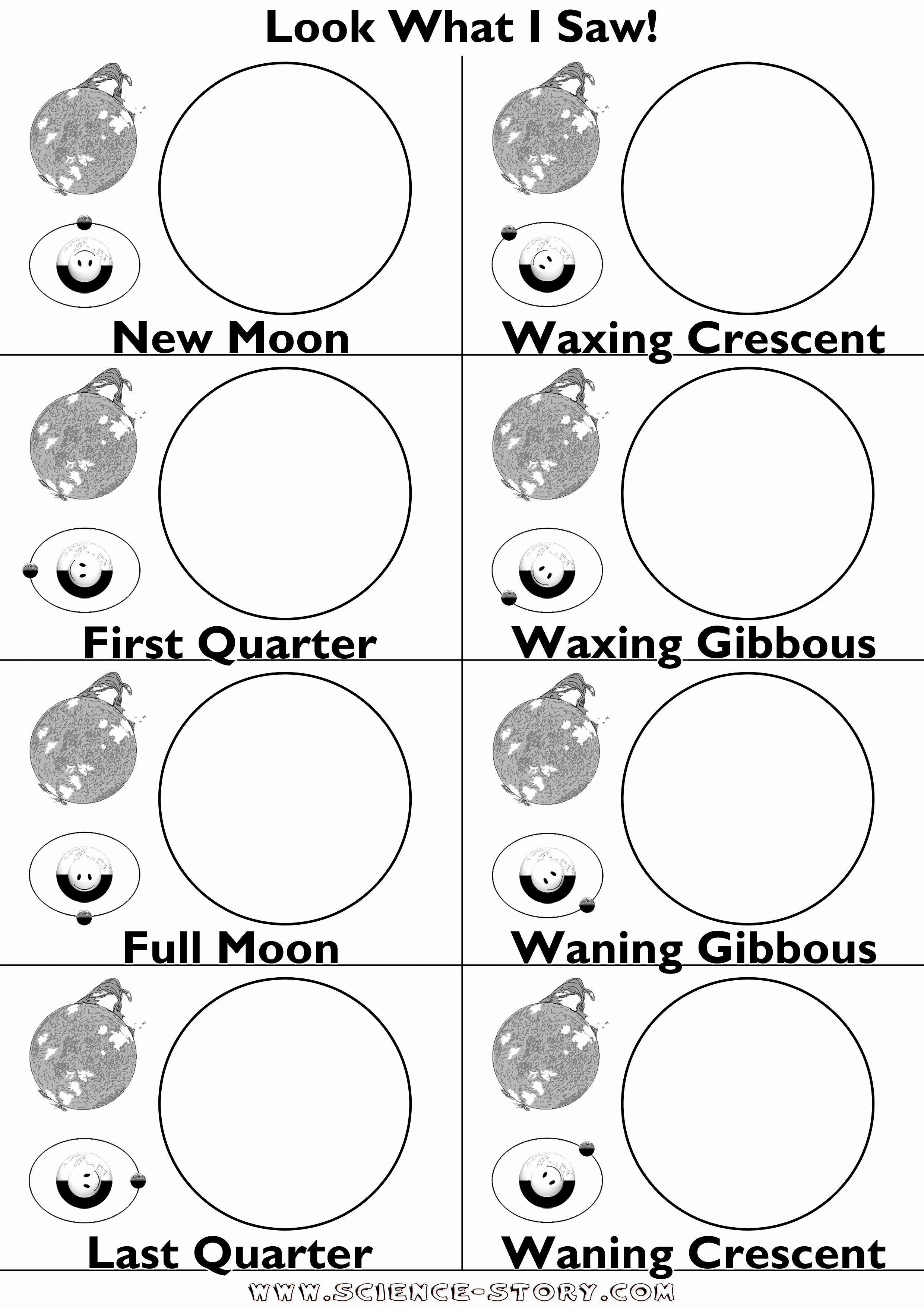 Moon Phases Worksheet Luxury 16 Best Of Moon