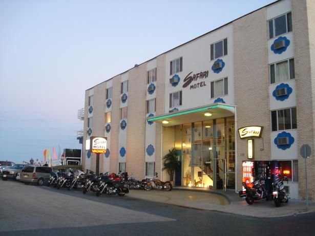 The Safari Motel Boardwalk Pet Policy Pet Friendly Beach Pet Friendly Hotels Ocean City Maryland