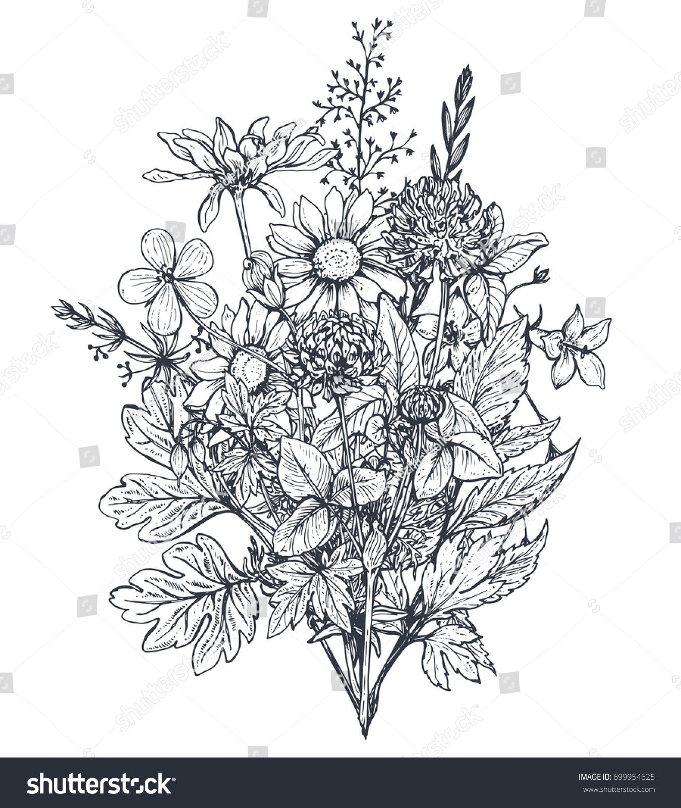 Vector Floral Bouquets With Black And White Hand Drawn Herbs And
