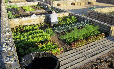 Wo Die Landschaftsarchtitektur Bluht Bau Garten Paletten