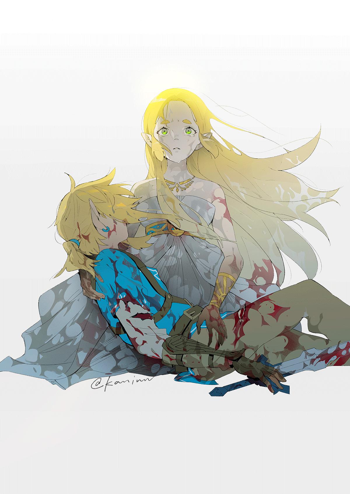 Kan On Twitter Legend Of Zelda Zelda Art Legend Of Zelda Breath