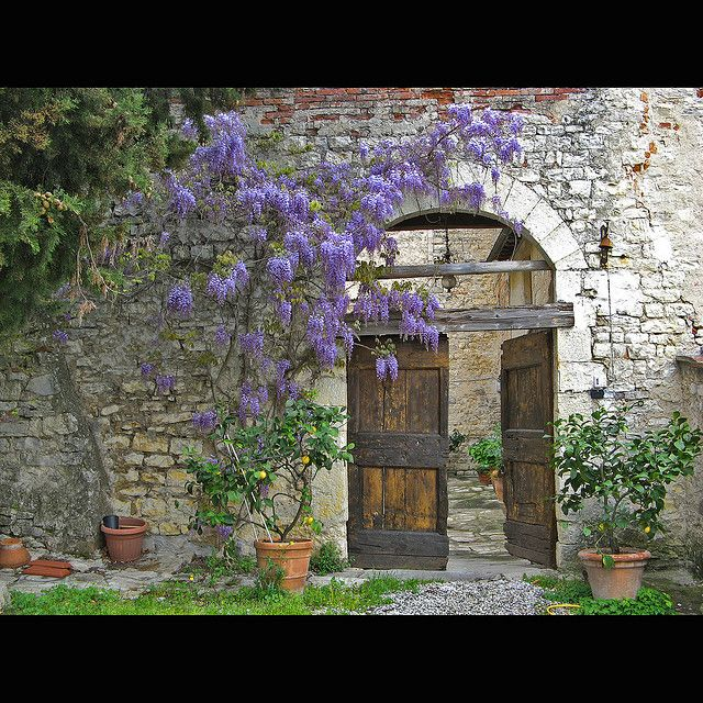 Tuscan House Style With Front Walkway And Italian Cypress: Italian Courtyard, Mediterranean