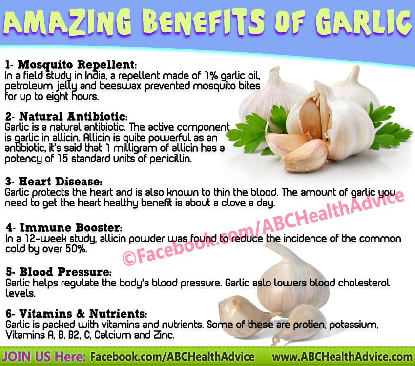 Abc Health Advice Garlic Benefits Herbalism Living Food