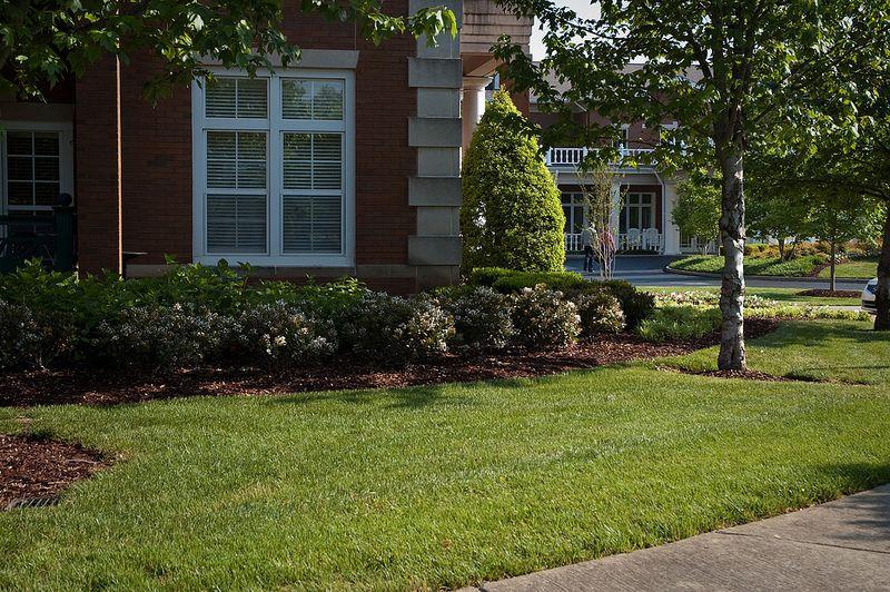 GreenPal Lawn Care. Feels like home. landscaping