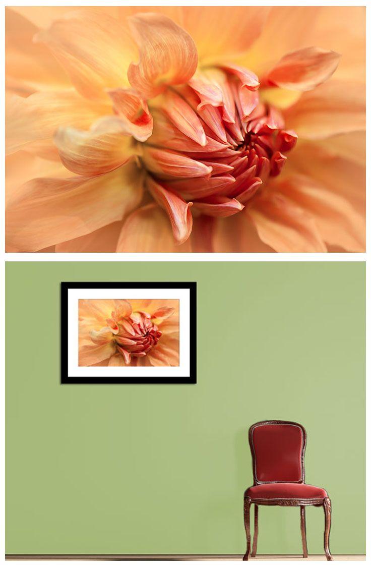 Flower fine art photography, wall decor print, dahlia photo print ...