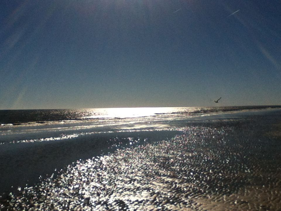 Love the beach!!!