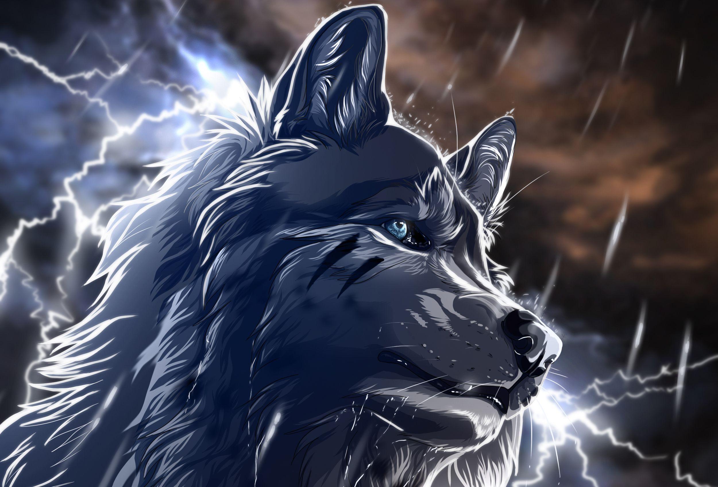 wolf boy manga Anime Wolf Boy Animewolf229266 Anime