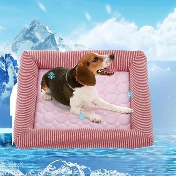 Pet Comfort Mattress Cooling Mat Pad Dunpie In 2020 Cat Bed Cool Dog Beds Dog Cooling Mat