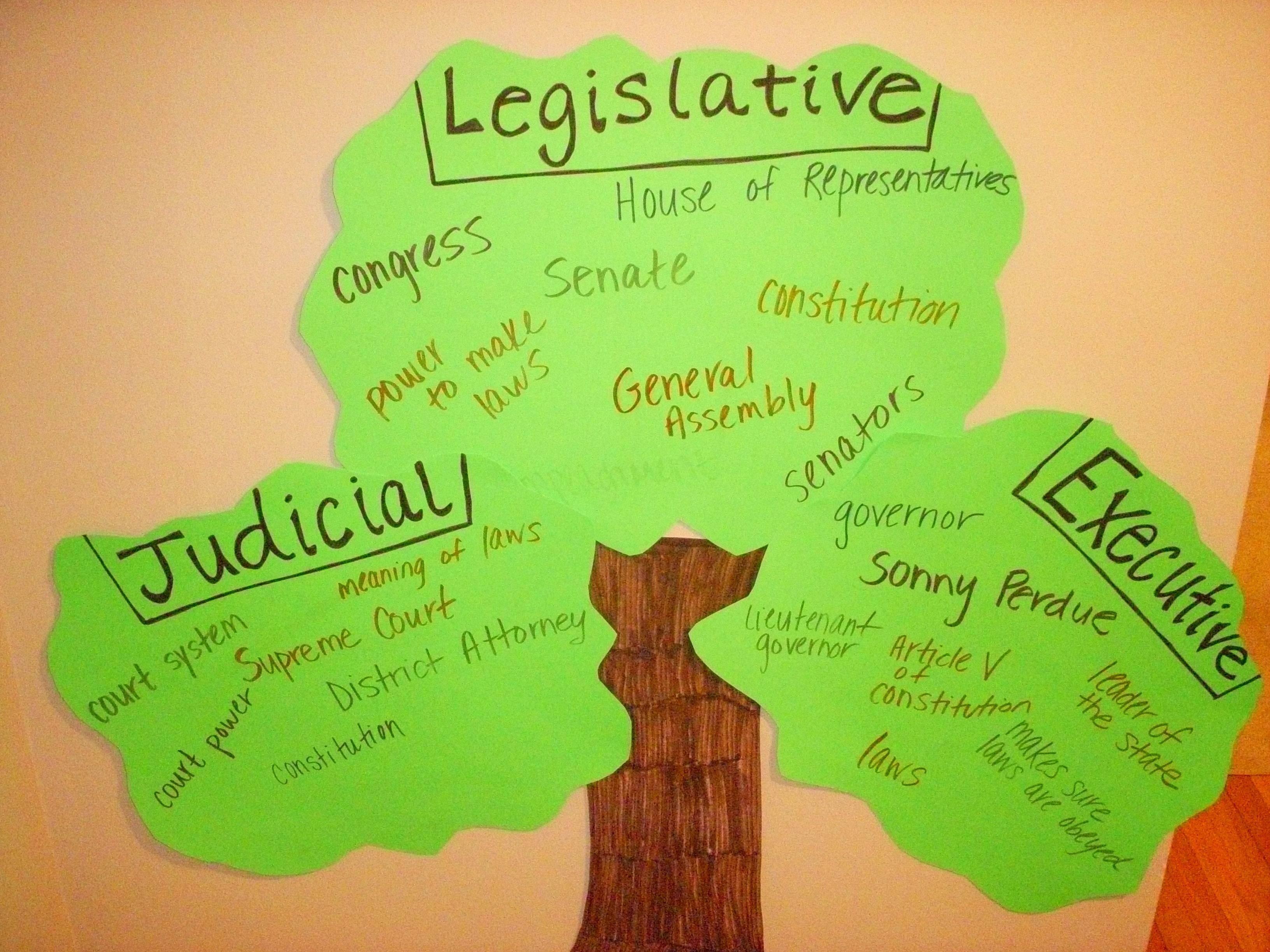 Tree branches of government social studies pinterest social tree branches of government ccuart Choice Image