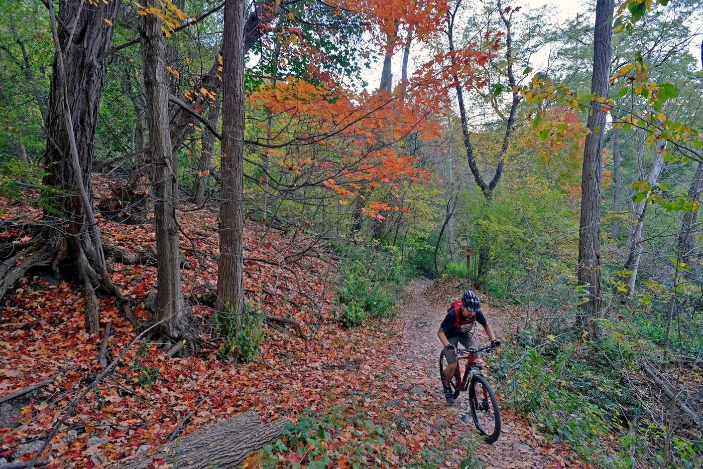 The 10 Most Beautiful Bike Rides In Toronto Beautiful Bike