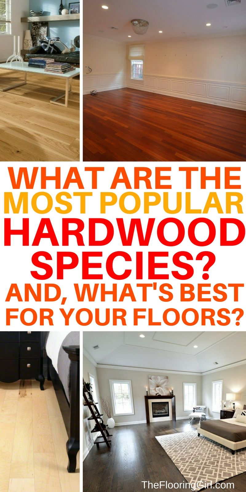 Most Popular Hardwood Flooring Species And Pictures Best Of The