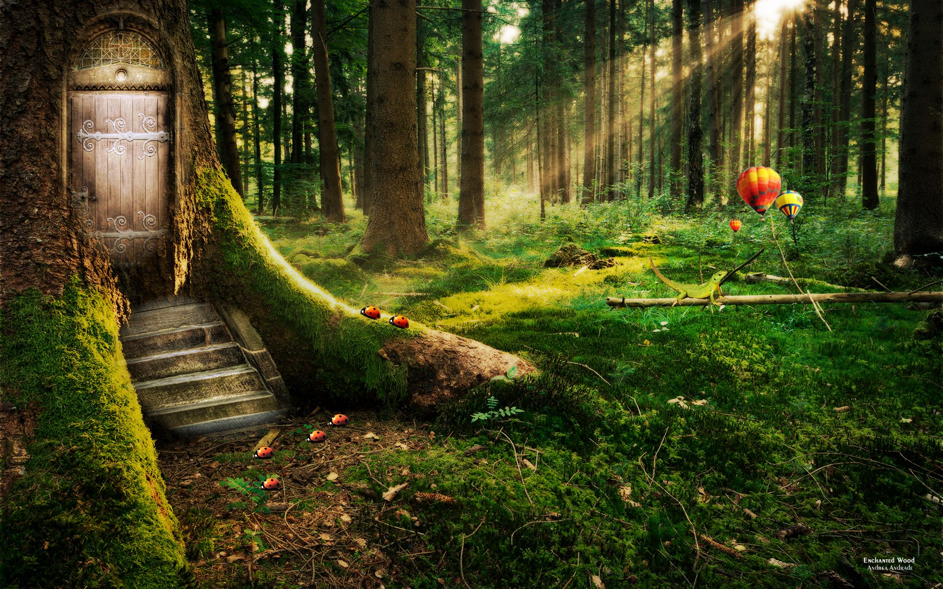 Forest Wall Paper enchanted forest | tree with a door enchanted forest hd wallpaper