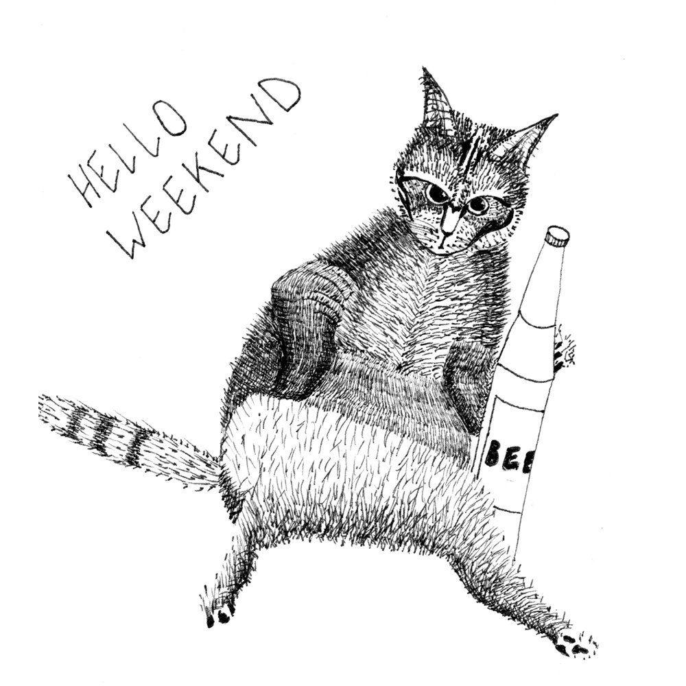 New Katze miese Katze lustig Illustration Handzeichnung Art Print Tiere Illustration Wanddeko schwarz weiss Wanddekoration s e