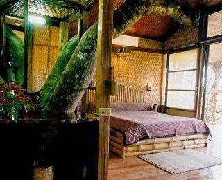 Slide 5 - World's Best Treehouse Hotels | Travel + Leisure