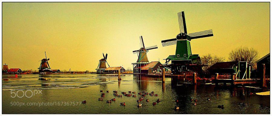 Working on Zaanse Schans by fotopeter45. @go4fotos