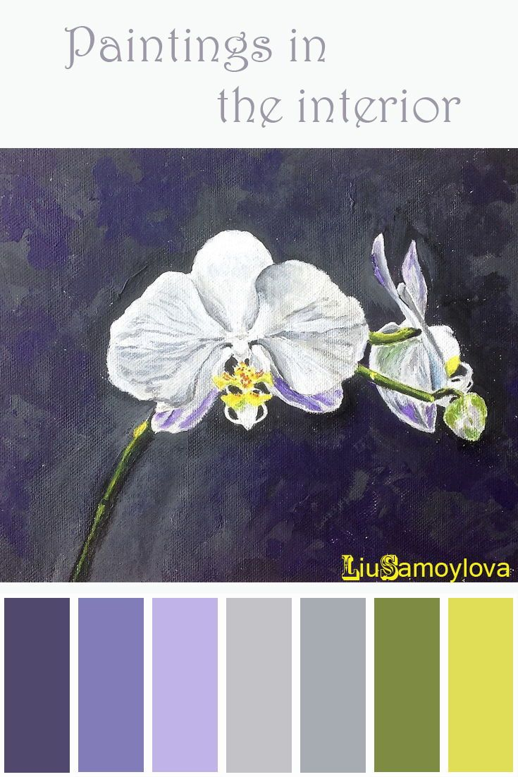 White orchid - Белая орхидея. Картина с цветком орхидеи ...