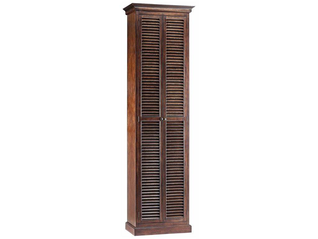 Tall Narrow Shoe Storage Stein World Living Room Cabinet 28242 Hickory Furniture