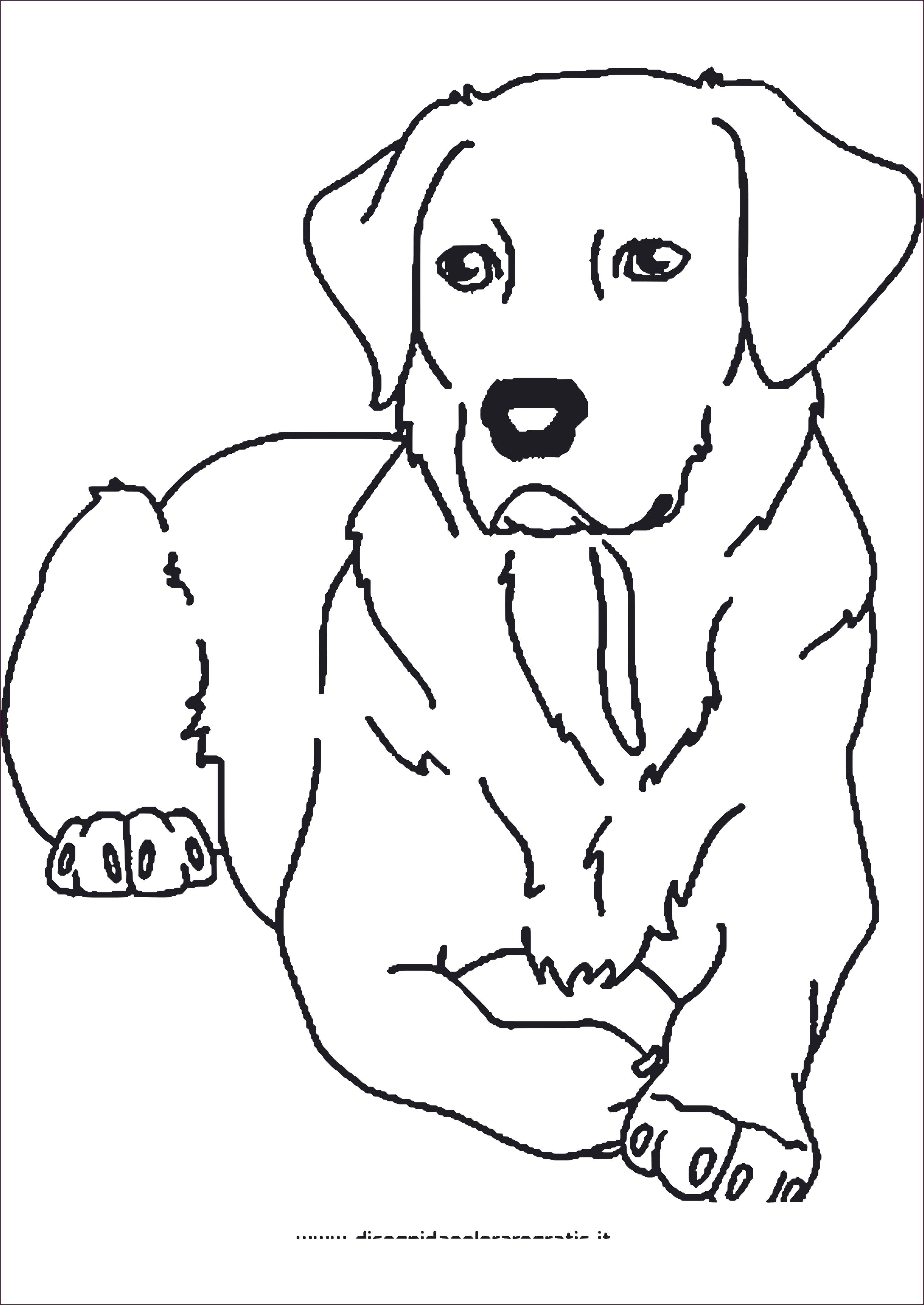 Tier Ausmalbilder Zum Ausdrucken  Ausmalbilder hunde