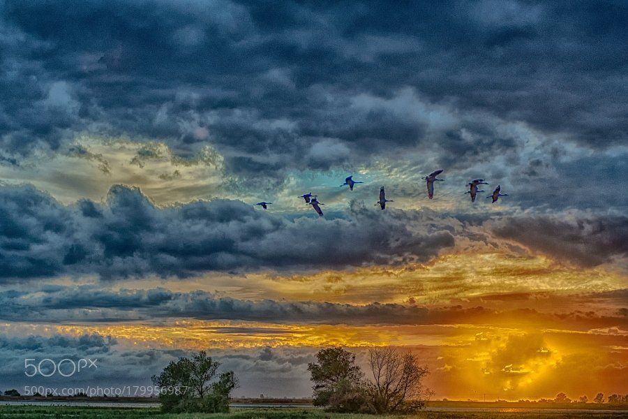 #photography just not enough by strock https://t.co/bqIntTrl84 #followme #photography